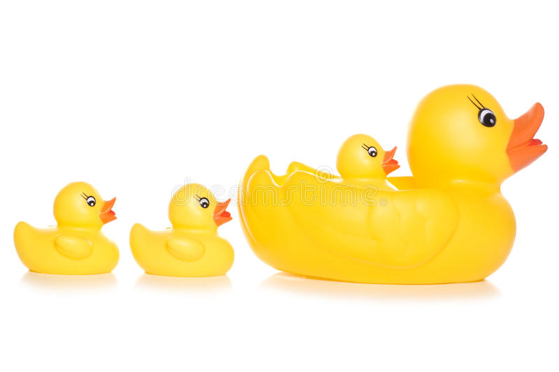 Family of toy ducks. Studio cutout stock photo