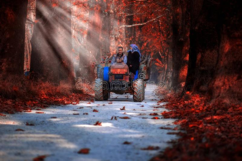 Family on tractor trailer in autumn. October, 2018, Turkey: Family on tractor trailer in autumn. Bursa in Turkey royalty free stock images