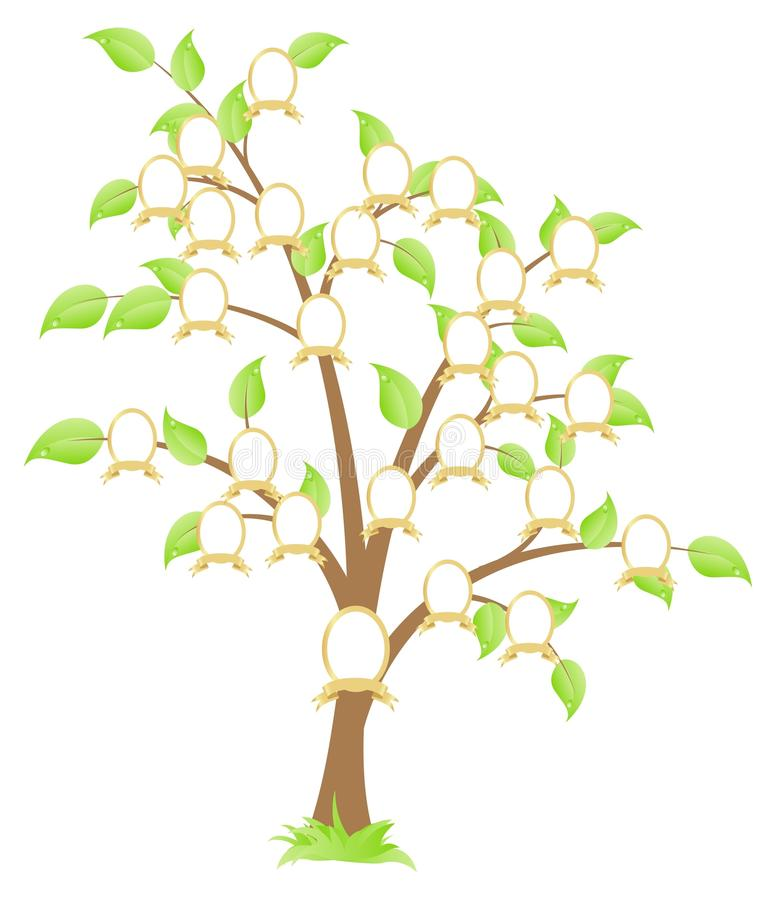 Download Family tree stock vector. Image of composition, nostalgia - 13751990