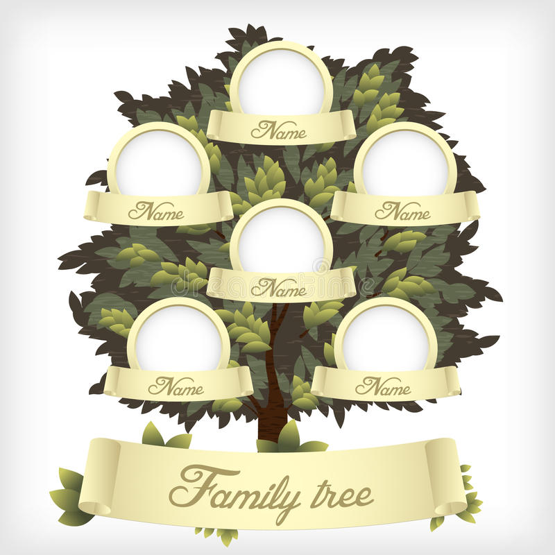 Family tree. Background. Vector illustration royalty free illustration