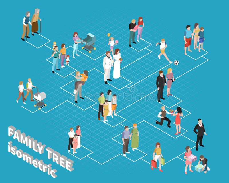 Family Tree Flowchart. With relatives adults and children isometric vector illustration vector illustration
