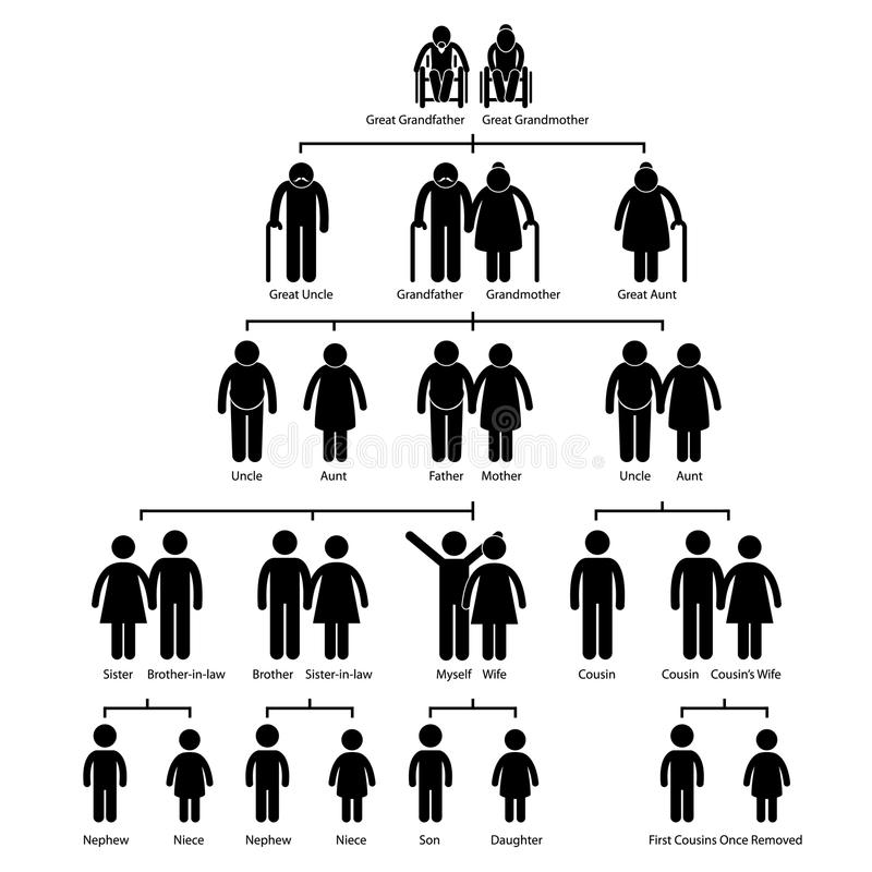 Family Tree Genealogy Diagram Pictogram. A set of pictogram representing the family tree of human royalty free illustration