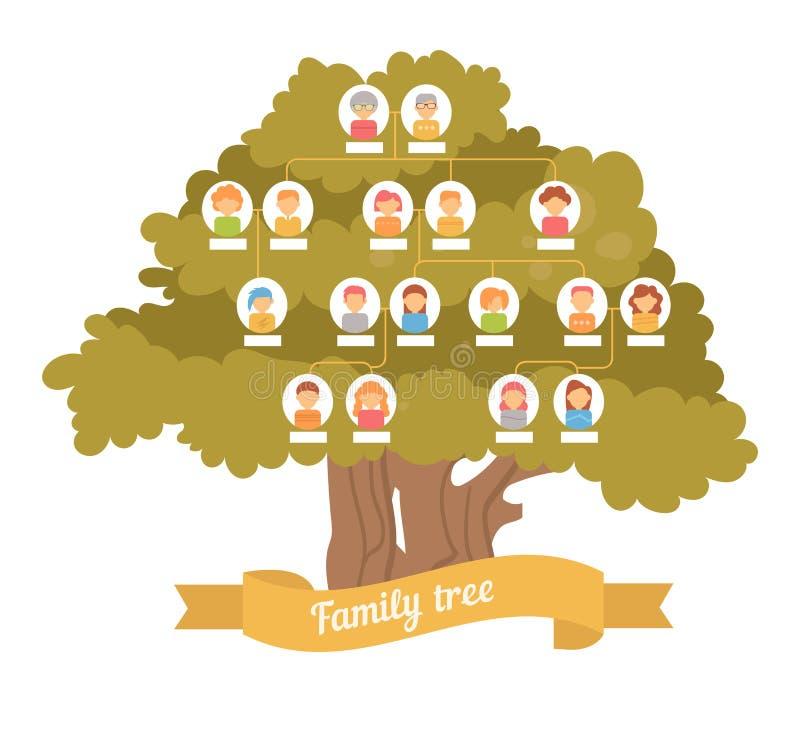 Family tree. Genealogy. Pedigree. Vector illustration. Cartoon character. Art on a white background stock illustration