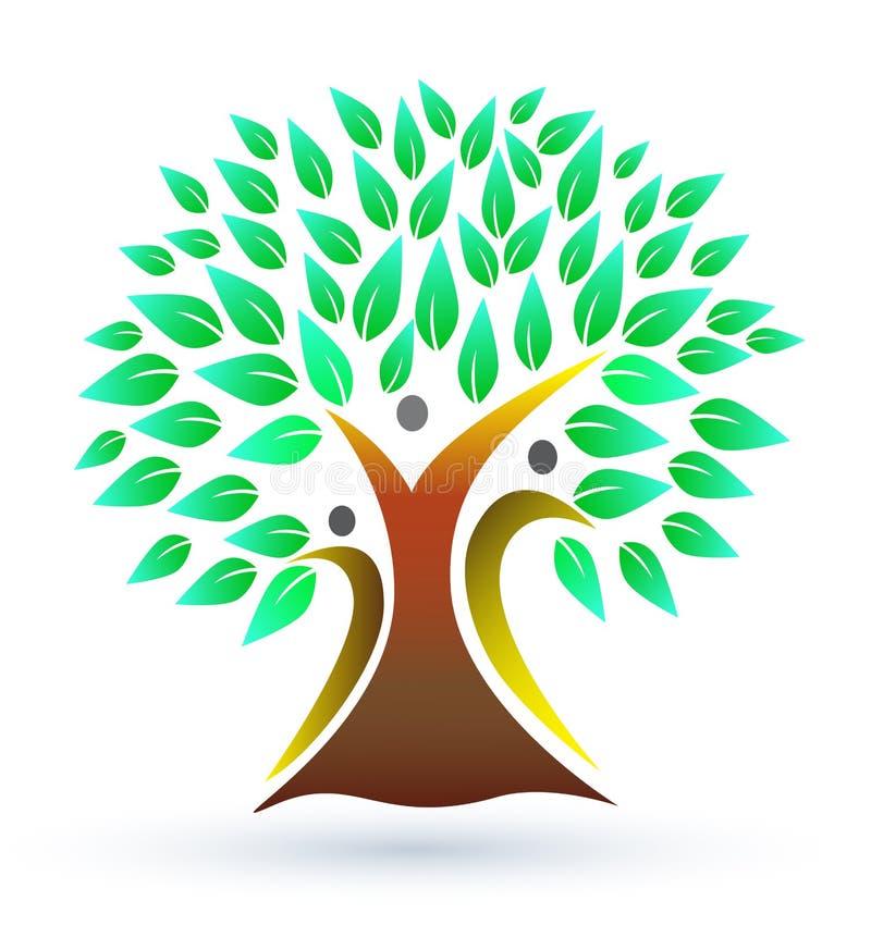 Family tree stock illustration