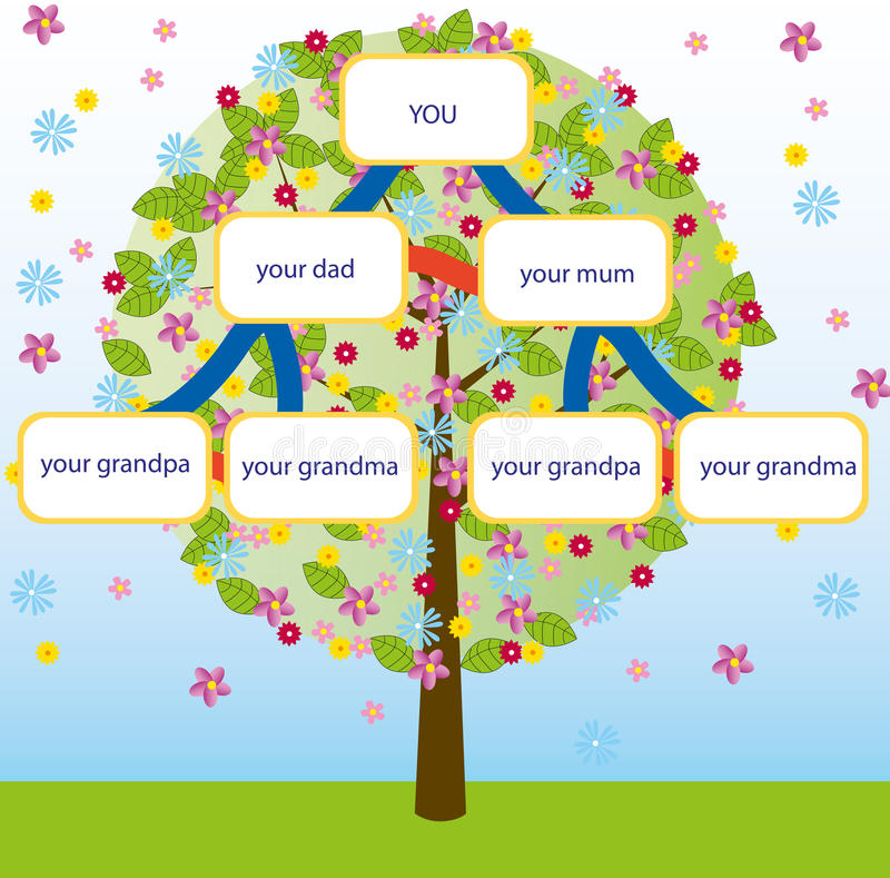 Family tree vector. Illustration of a family tree. Genealogic scheme with a spring tree with flowers on background. Vector. eps available vector illustration