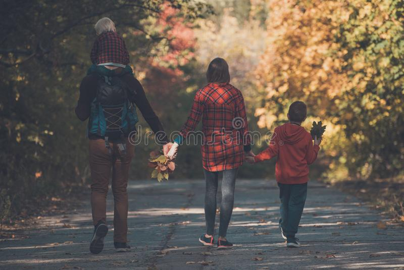 Family with two sons walking in the autumn forest. Back view stock images