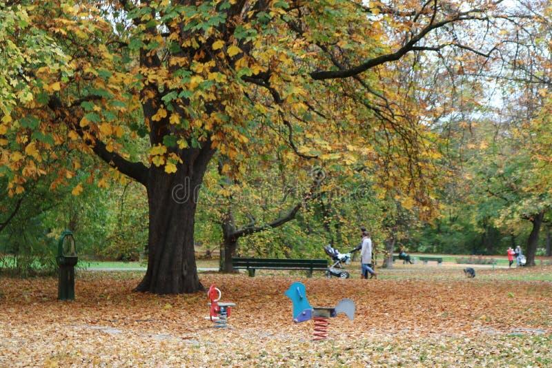 Family walk in the park royalty free stock photos