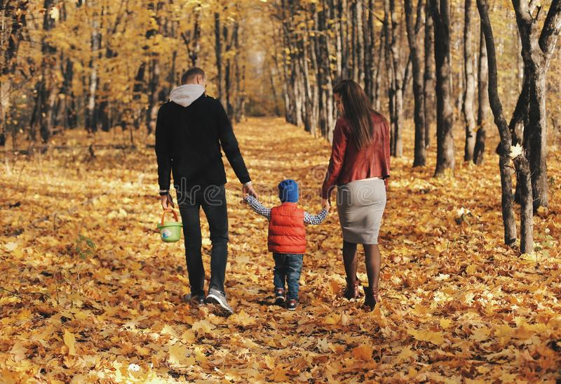 Family walking with son through autumn forest. Back view royalty free stock photo