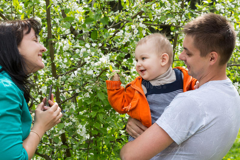 Family walks in the park among the trees royalty free stock photos
