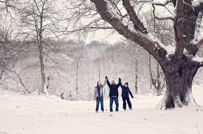 Family winter fun stock photography