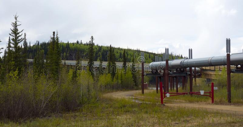 The famous alaskan pipeline in the springtime royalty free stock photography