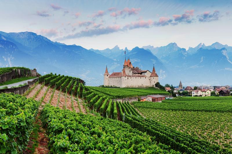 Famous castle Chateau d`Aigle in canton Vaud, Switzerland. Castle in Aigle is overlooking surrounding vineyards and the Alps. royalty free stock photos