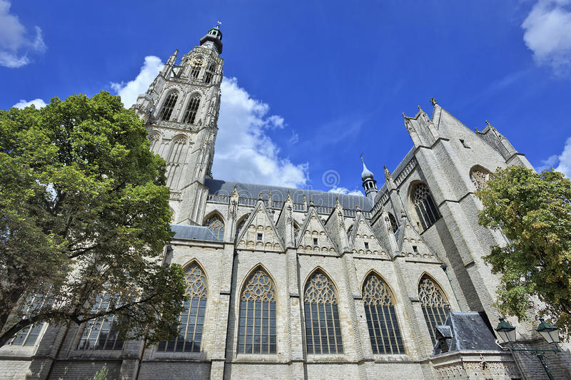 Famous cathedral at the old market in Breda, Netherlands. Famous cathedral at the old market in Breda against a blue sky, Netherlands, Europe royalty free stock photo