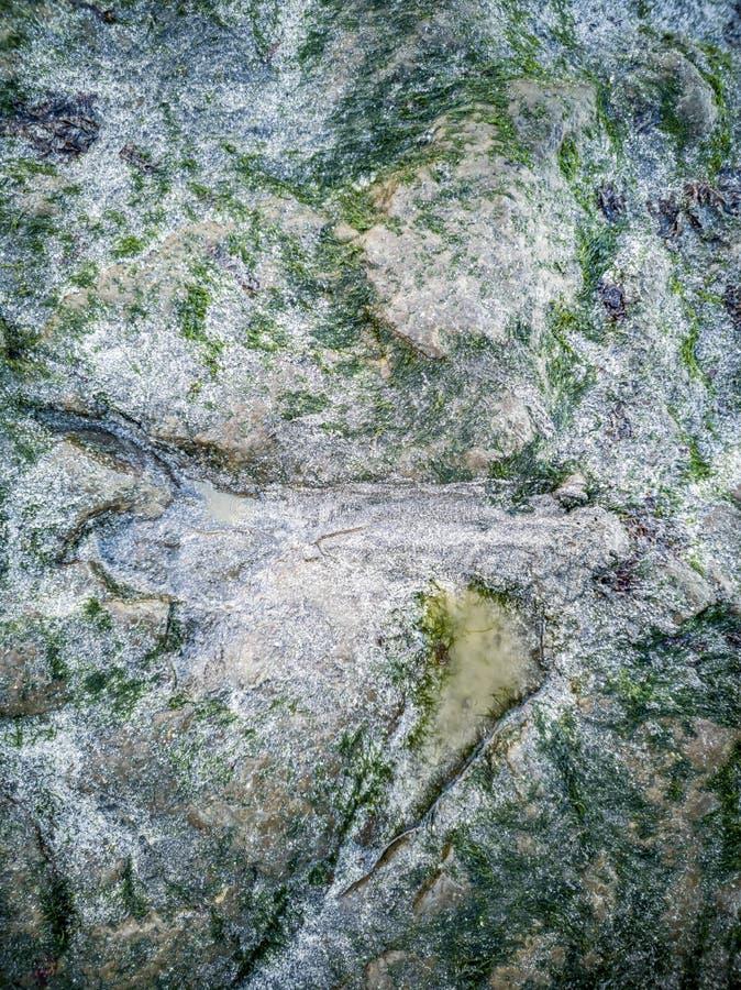 The famous Dinosaur footprints at An Corran beach by Staffin on the isle of Skye. Scotland stock photos