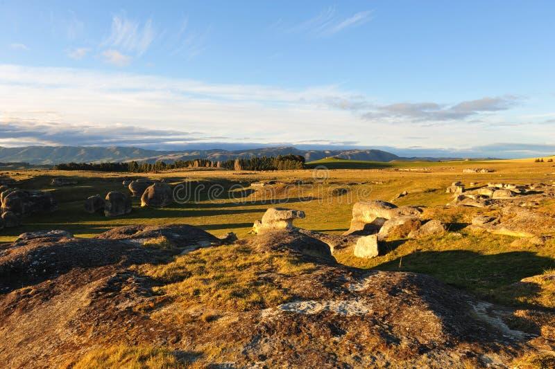 Famous Elephant Rocks in New Zealand royalty free stock photos