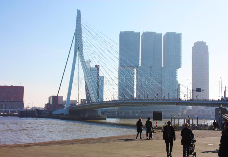 The famous Erasmus Bridge amidst the mist on a late autumn day in Rotterdam, Holland, the Netherlands royalty free stock photography