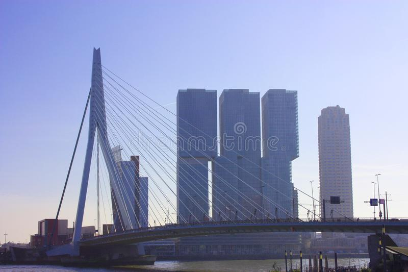 The famous Erasmus Bridge amidst the mist on a late autumn day in Rotterdam, Holland, the Netherlands royalty free stock photos