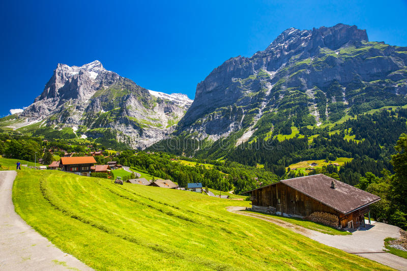 Famous Grindelwald valley, green forest, Alps chalets in Berner Oberland, Switzerland. Panorama view to famous Grindelwald valley, green forest, Alps chalets and stock photos