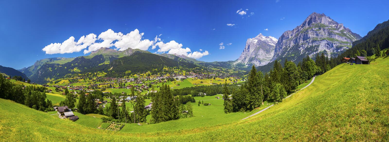 Famous Grindelwald valley, green forest, Alps chalets and Swiss Alps, Berner Oberland, Switzerland. Panorama view to famous Grindelwald valley, green forest royalty free stock photography
