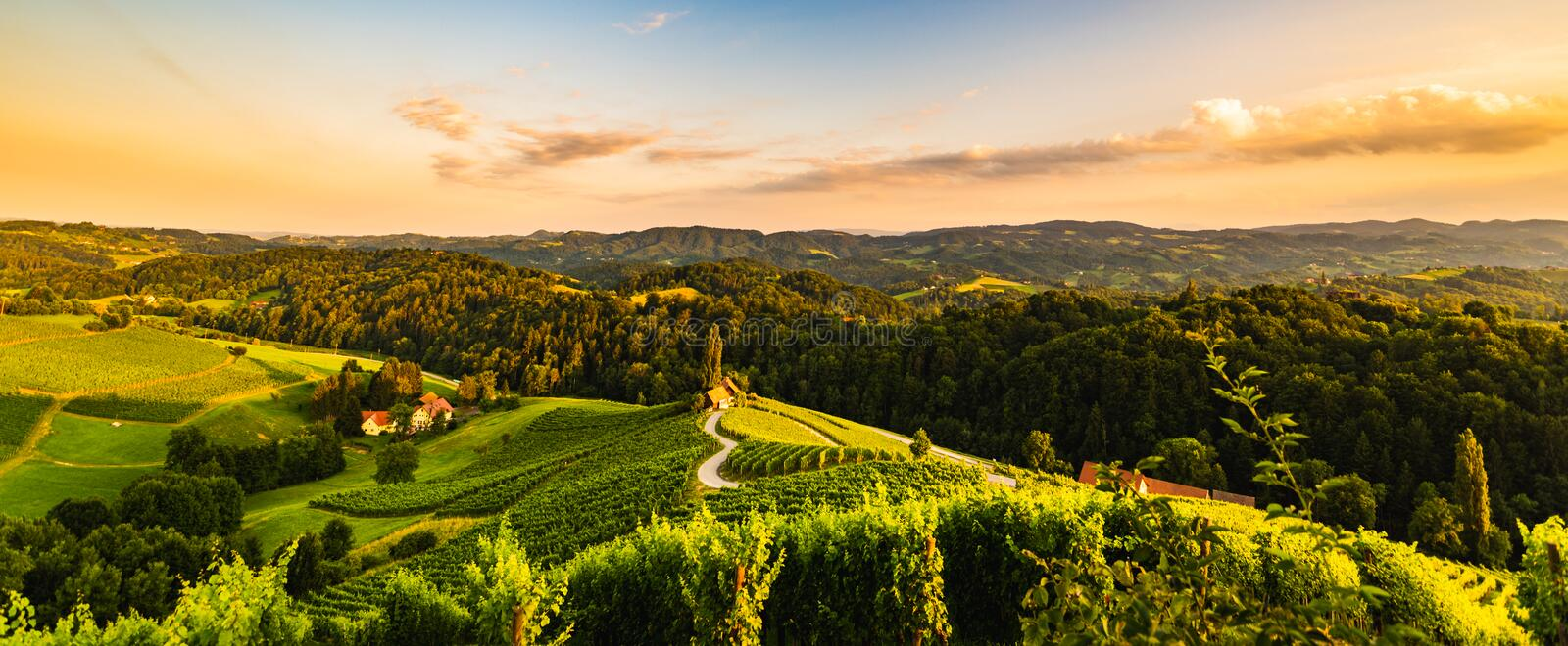 Famous heart shaped street at vineyards in Slovenia close to the border with Austria south styria. Tourist destination, spicnik, sulztal, gamlitz, ripe, season stock photos