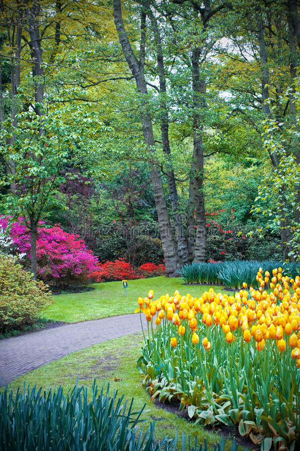 Famous Keukenhof garden stock photo