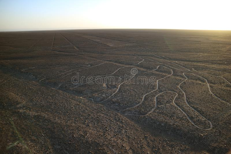 The famous large ancient geoglyphs Nazca lines called Arbol tree in evening sunlight, view from observation tower at Nazca, Peru. The famous large ancient stock images
