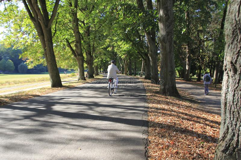 Famous Lichtentaler Allee, with cycle path, stream Oos and strollers in Baden-Baden royalty free stock photo