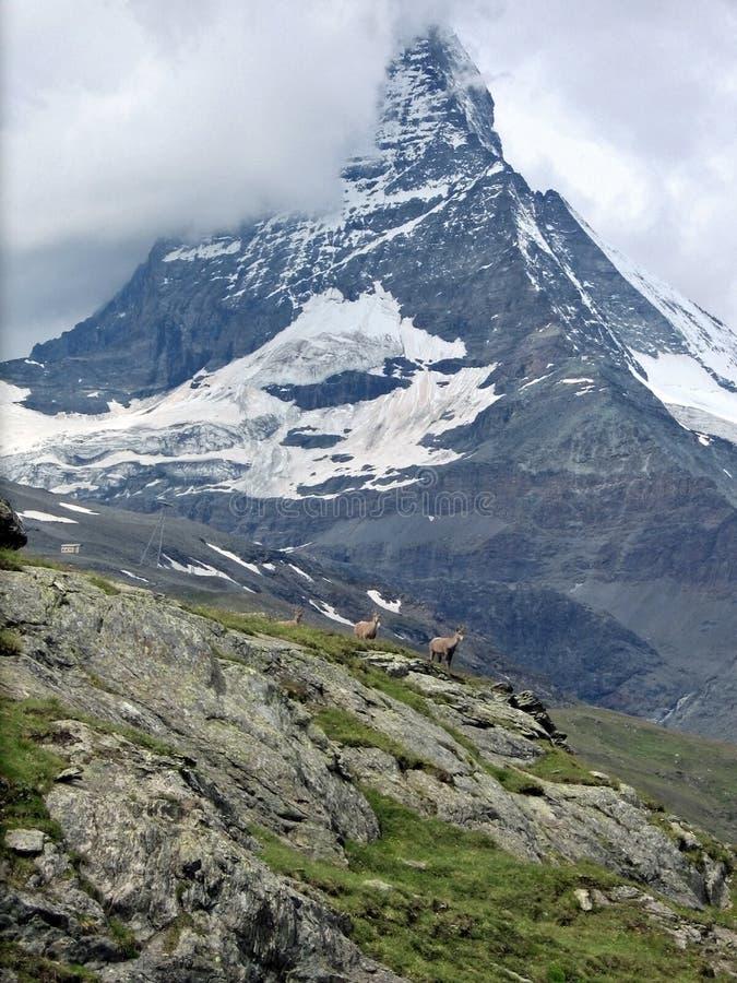 Famous Matterhorn in Swiss canton. Valais in clouds stock photos
