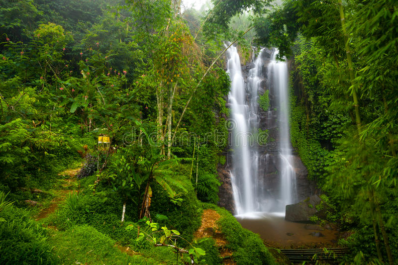 A famous Munduk Waterfall in a tropical jungle island of Bali, Indonesia royalty free stock photography