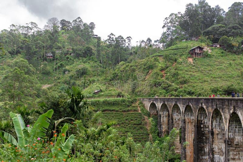 The famous nine-arch bridge of the railway in the jungle in Sri Lanka.  stock image