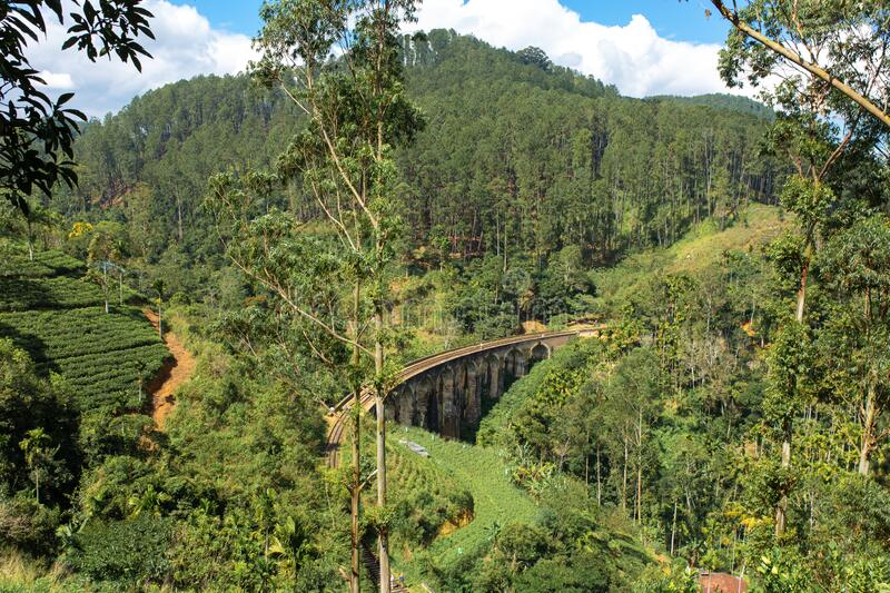 The famous nine-arch bridge of the railway in the jungle in Sri Lanka.  stock photography