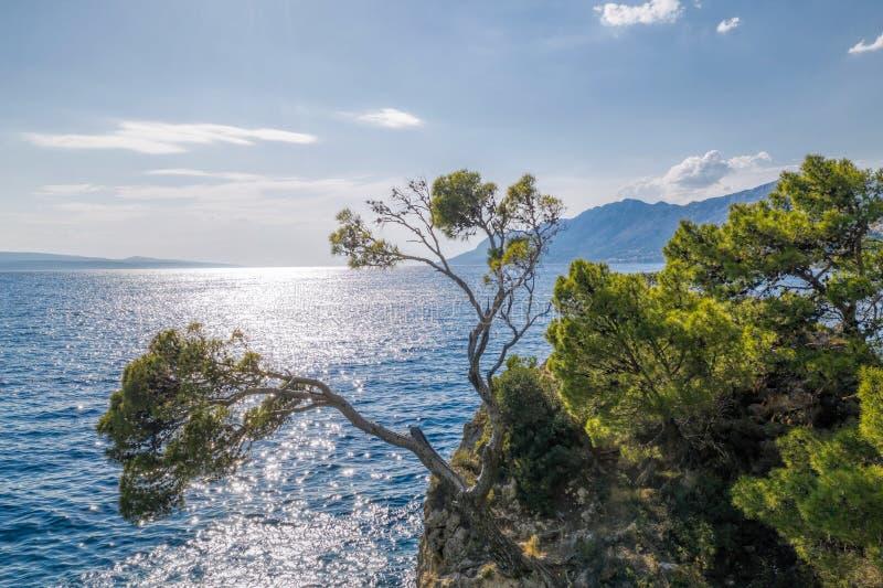 Punta Rata beach with little island in Brela, Dalmatia, Croatia stock images
