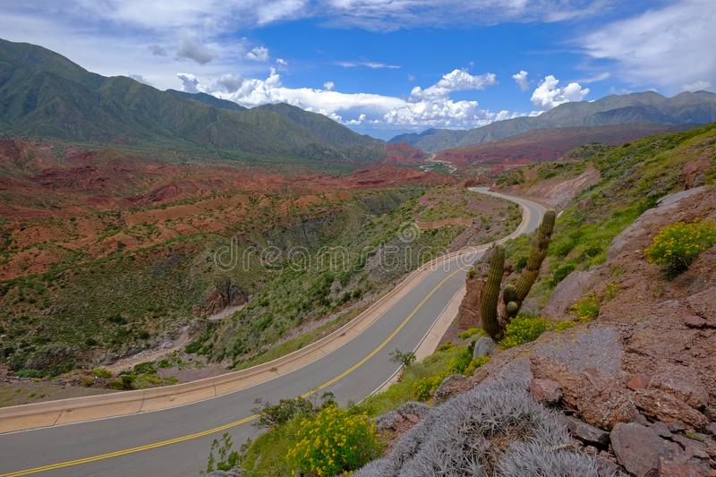 The famous Road Ruta 40 trough the beautiful canyon of the Cuesta de Miranda, La Rioja, Argentina royalty free stock photography