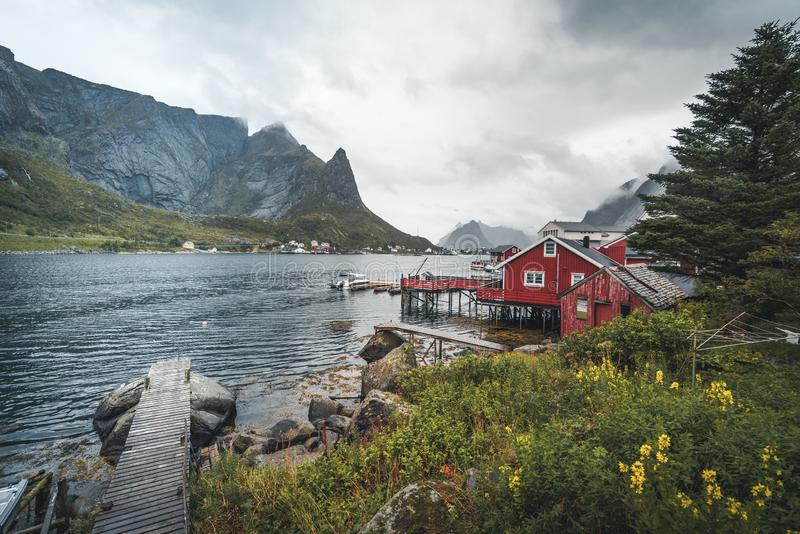 Famous tourist attraction of Reine in Lofoten, Norway with red rorbu houses, clouds, rainy day with bridge and grass and royalty free stock photo