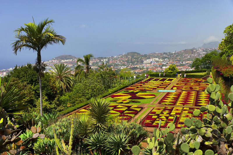 Famous Tropical Botanical Gardens in Funchal royalty free stock image