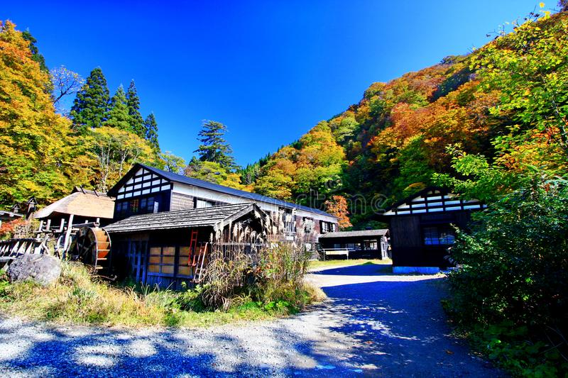 Famous Tsurunoyu onsen ryokan during autumn. One of the oldest hot spring ryokan in Japan, Tsurunoyu onsen surrounding with colorful autumn forest in the stock photo