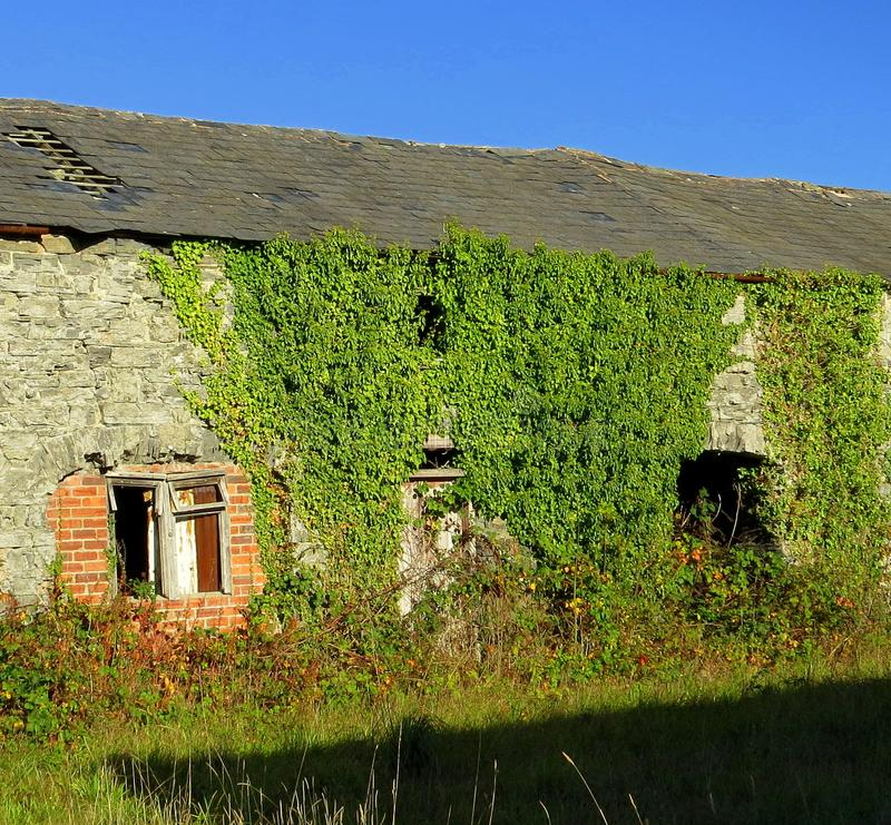 Farm building, derelict. stock photography