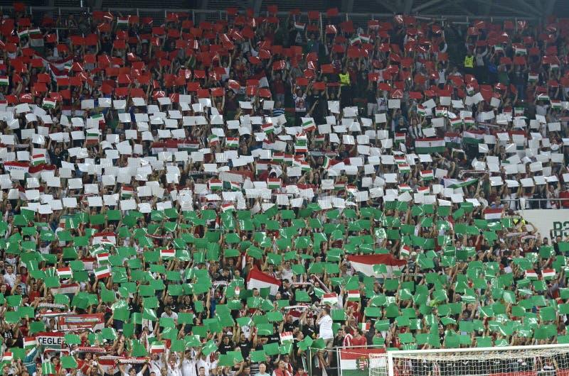Fan de futebol húngaros foto de stock royalty free
