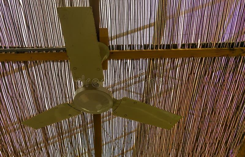 Fan de plafond en plastique, climats de syst?me de refroidissement, tropicaux et chauds simples photo stock