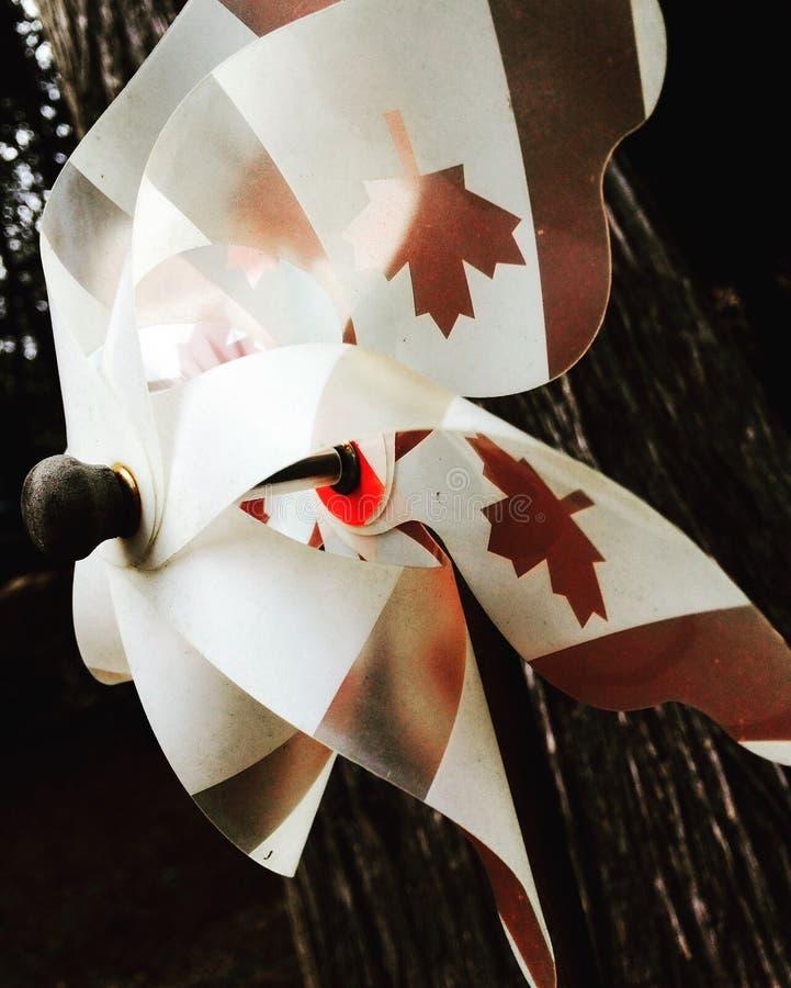 Fan del Canada fotografia stock
