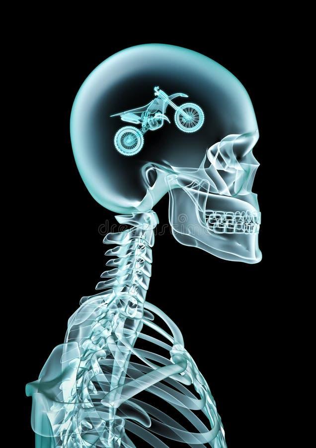 Fan del motocrós de la radiografía ilustración del vector