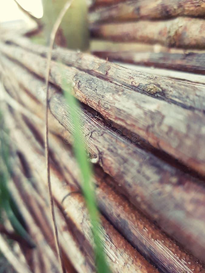Fance di legno fotografie stock libere da diritti