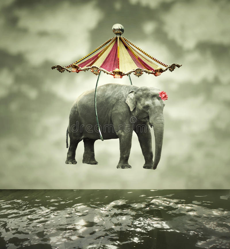 Fanciful elephant royalty free stock photo