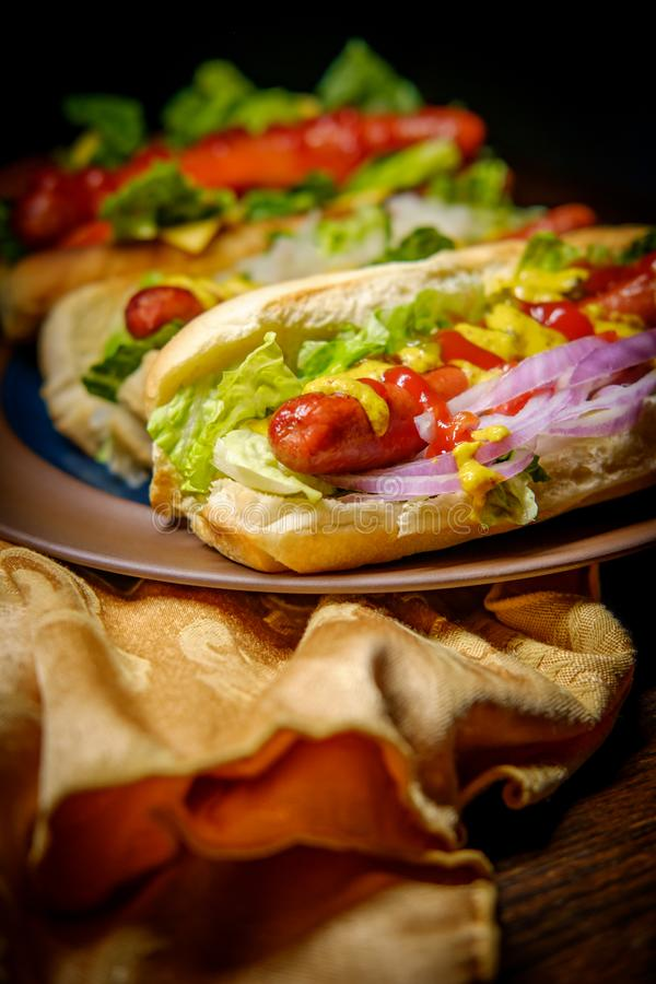 Fancy Grilled Hotdogs. With many toppings including relish and sauerkraut royalty free stock photography