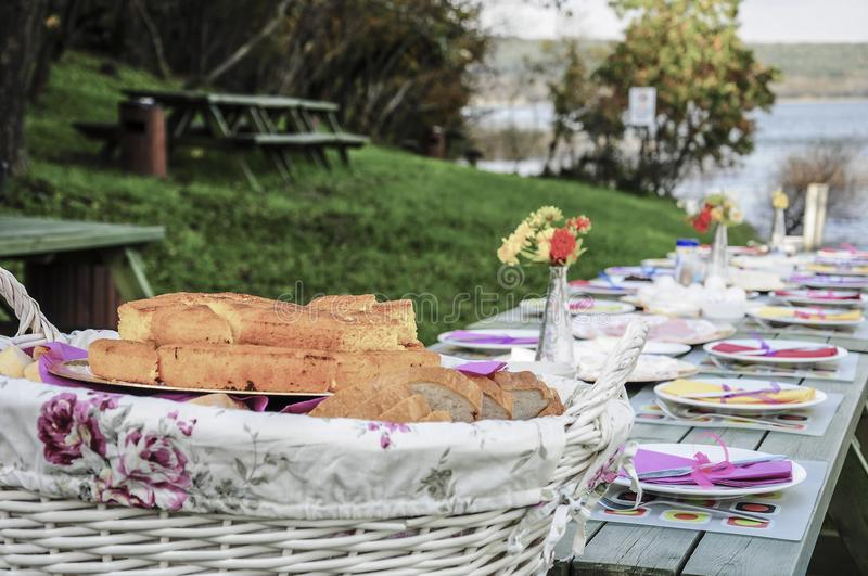 Download A Fancy Picnic Table Full Of Food By Lake In Spring Stock Image    Image