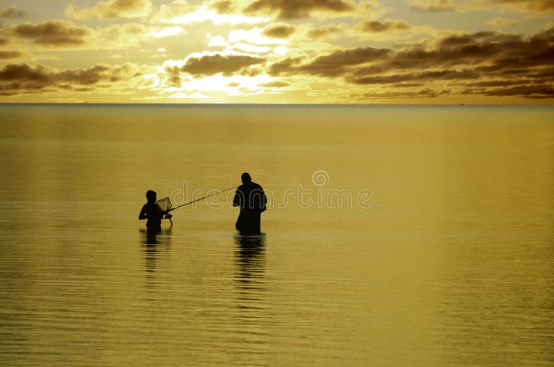 Fang bei Sonnenuntergang stockbilder