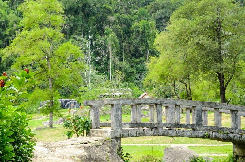 Fang Hot Springs, Tailândia fotos de stock royalty free