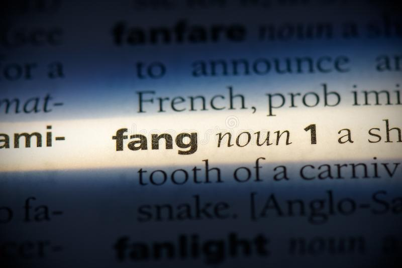 Fang obraz stock