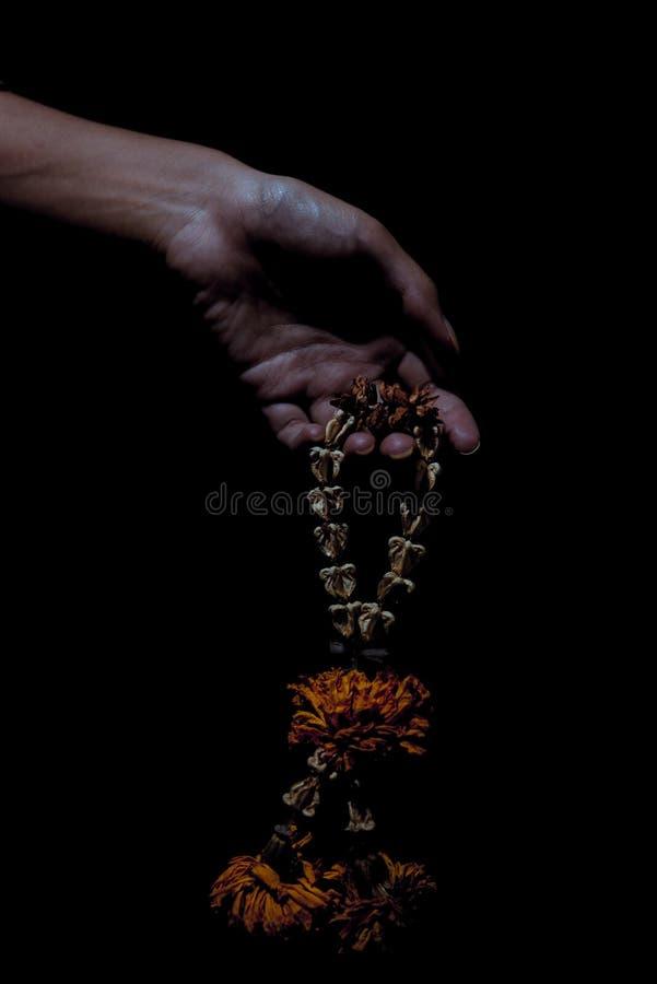 Fangen der Trockenblumegirlande stockfoto