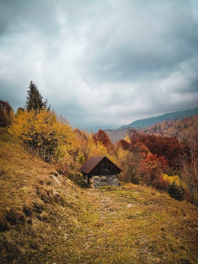 Fangen Sie vom Herbst an lizenzfreie stockfotografie